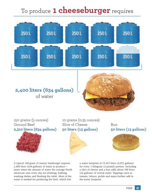 Water Footprint of a Cheeseburger