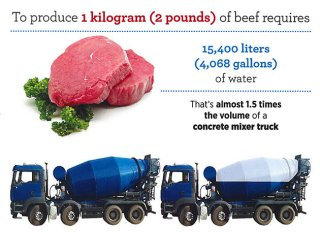 Water Footprint of Beef