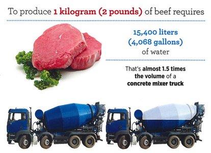 Water Footprint of Beef
