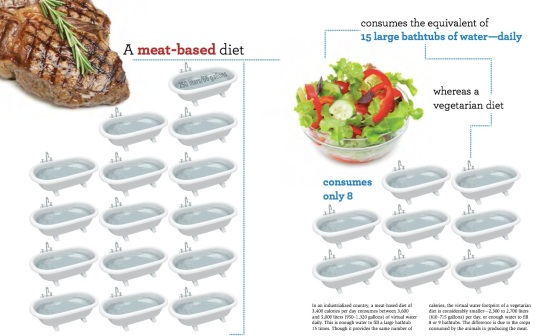 Meat-based diet VS Vegetarian