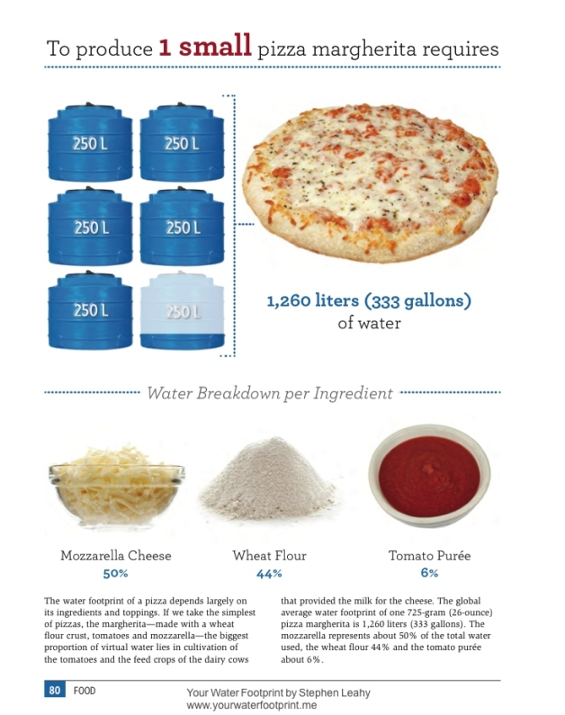YWF graphic -pizza